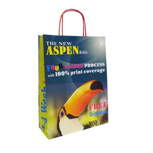 Aspen Kraft Carrier Bag