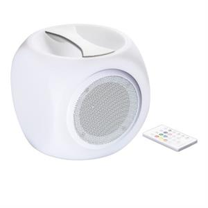 Splashproof Outdoor Speaker