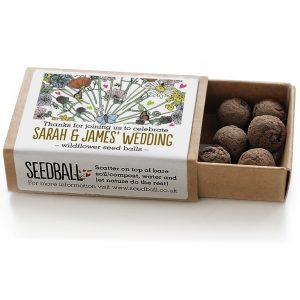 Wildflower Seedball Boxes
