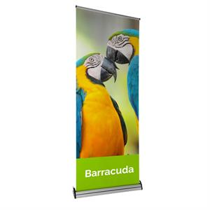 Barracuda Small Pull Up Banner