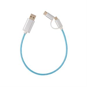 3 in 1 Flowing Light Cable