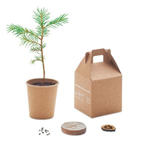Grow Your Own Growtree