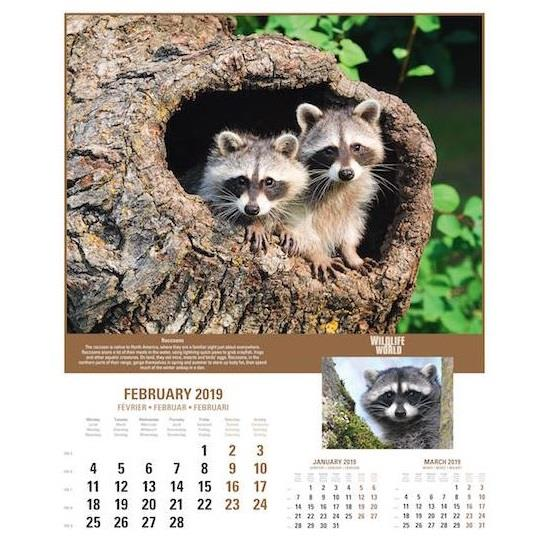 World Wildlife Wall Calendar